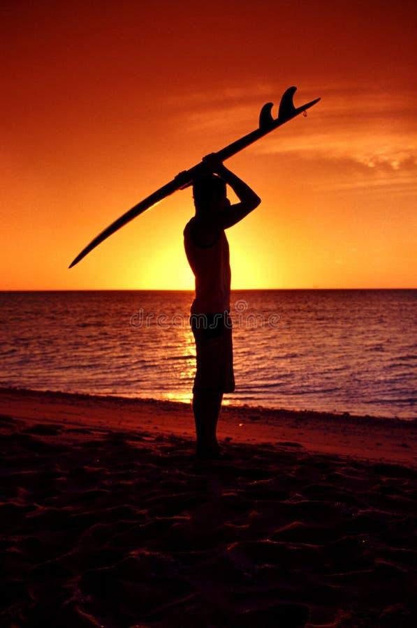 Het surfen en zonsopgang stock fotografie