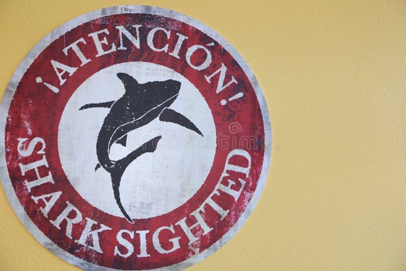 Het surfen gebeurtenissen en haaiseizoen! Openbare waarschuwing adviserend over haaien schutblad stock fotografie