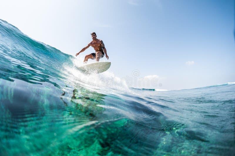 Het surfen stock afbeelding