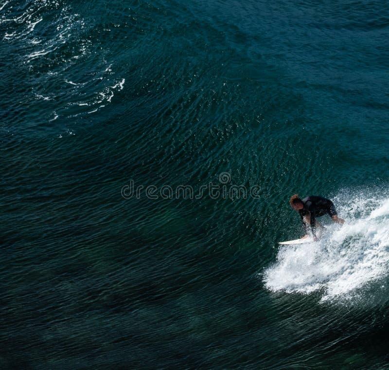 Het surfen stock afbeeldingen