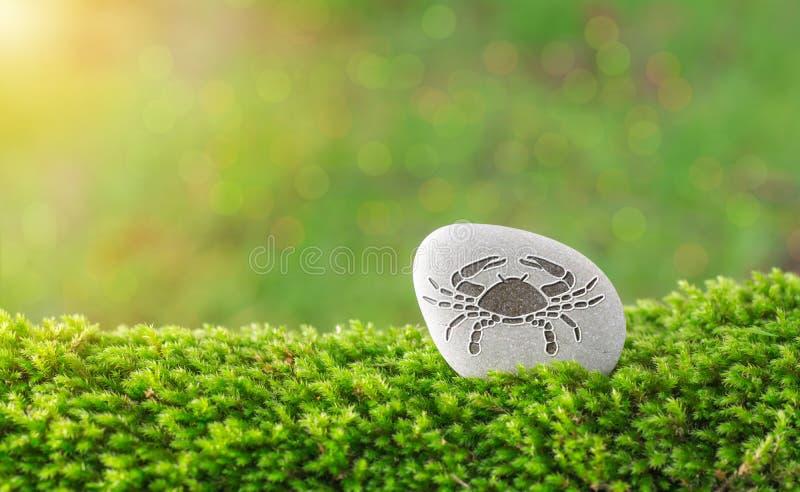 Het symbool van de kankerdierenriem in steen stock fotografie