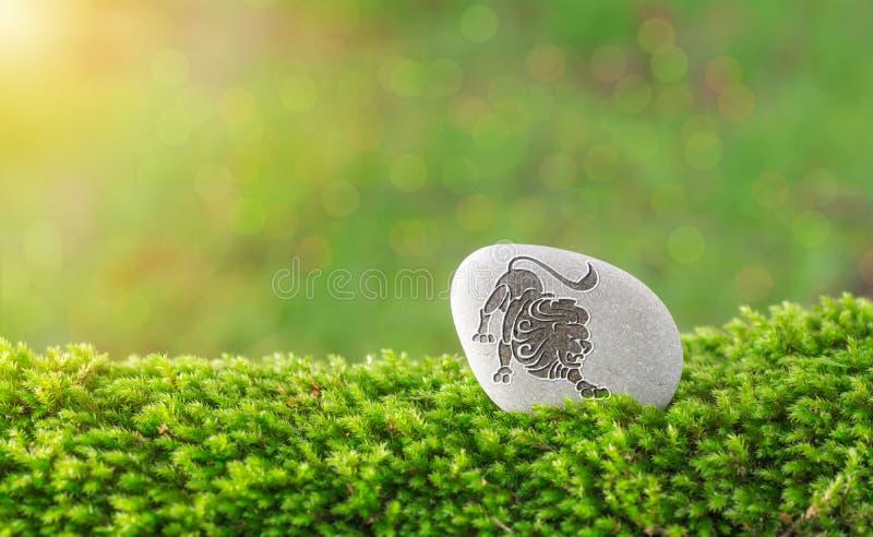 Het symbool van de Leeuwdierenriem in steen stock afbeeldingen