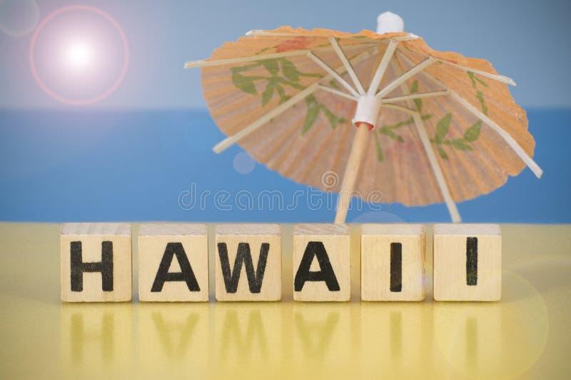 Download Het Symbool Van De Vakantie - Hawaï Stock Foto - Afbeelding bestaande uit brief, vakantie: 29503216