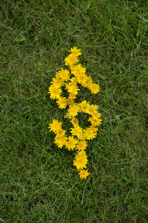Het symbool van het geld dat met Bloemen wordt geschreven stock fotografie