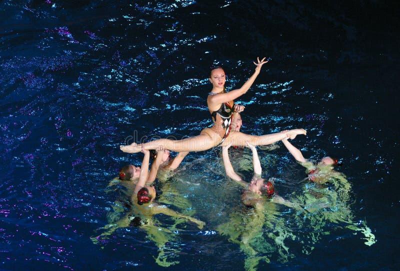 Het synchrone zwemmen stock fotografie