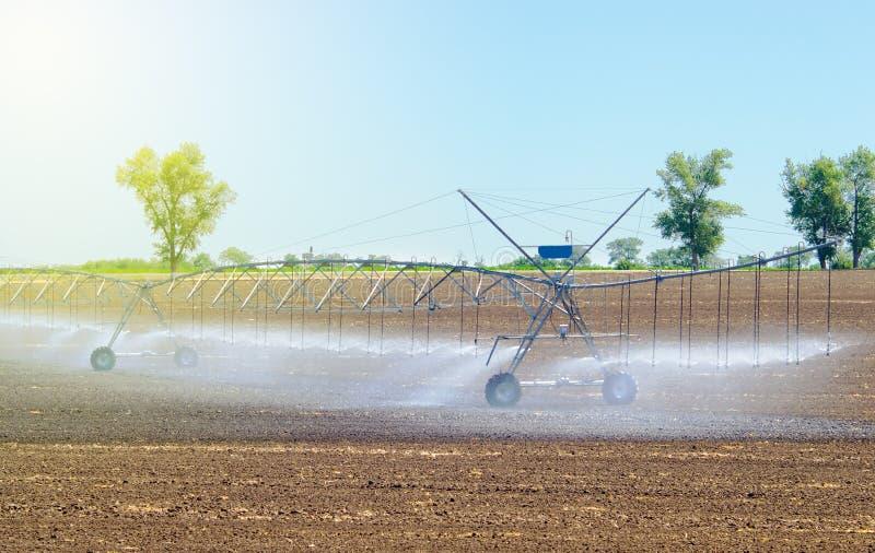 Het systeem van de gebiedsirrigatie voor de betere installatiegroei en het verdere cultuur en kweken van landbouwgewassen stock foto