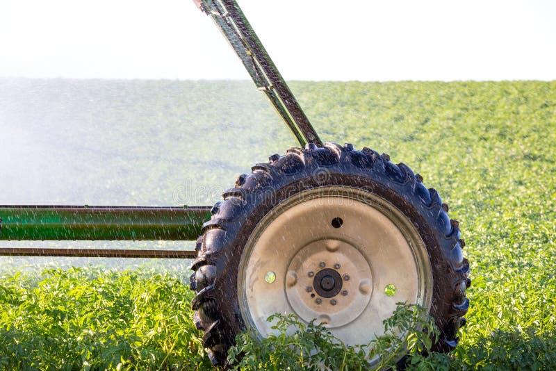 Het systeem van de het gewassenirrigatie van de centrumspil voor landbouwbedrijfbeheer royalty-vrije stock afbeeldingen