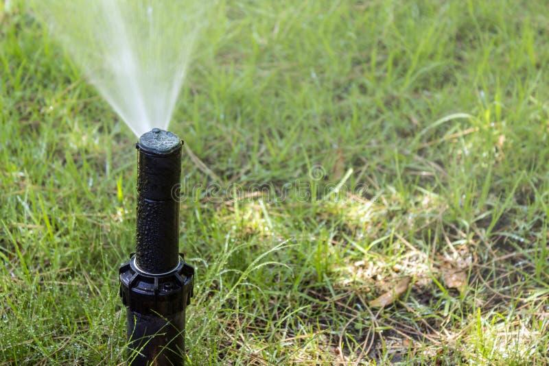 Het systeemsproeier van de tuinirrigatie het water geven gazon stock afbeeldingen
