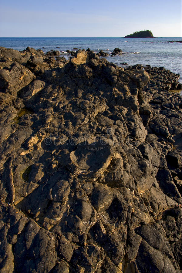 Het tapijt van steen in een strand in bemoeiziek is Madagascar royalty-vrije stock foto