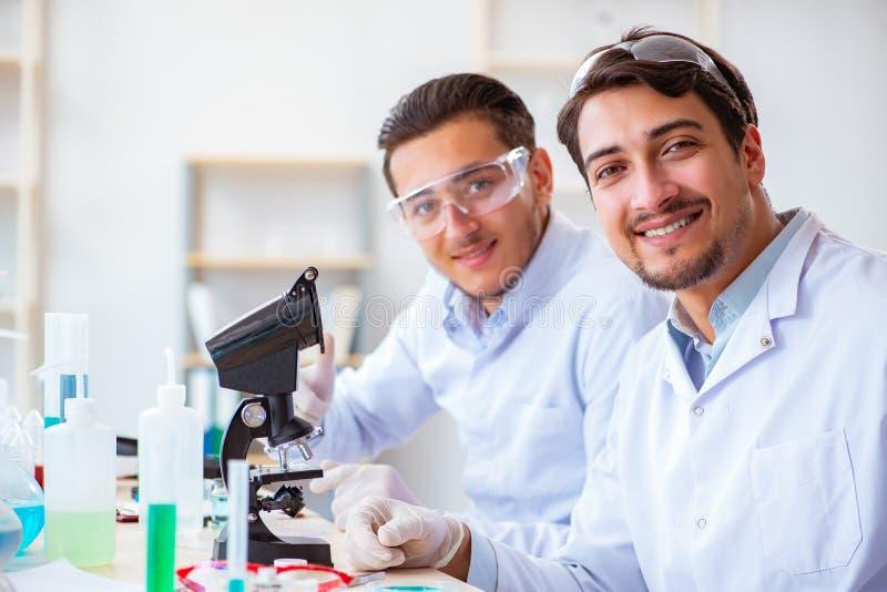 Het team van chemici die in het laboratorium werken royalty-vrije stock fotografie