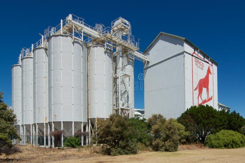 Het Teken van de dingobloem, Fremantle, Westelijk Australië royalty-vrije stock foto's