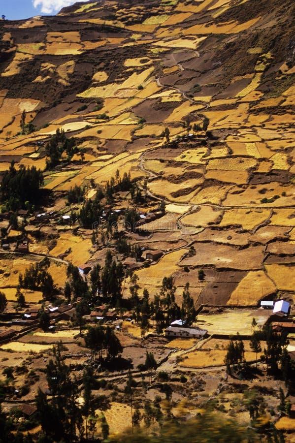 Het terras van Inca op Chavin royalty-vrije stock foto's