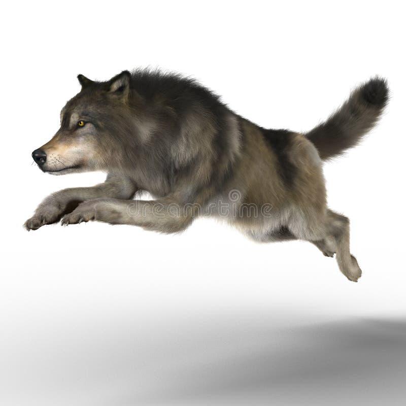 Het teruggeven van Wolf Running stock illustratie