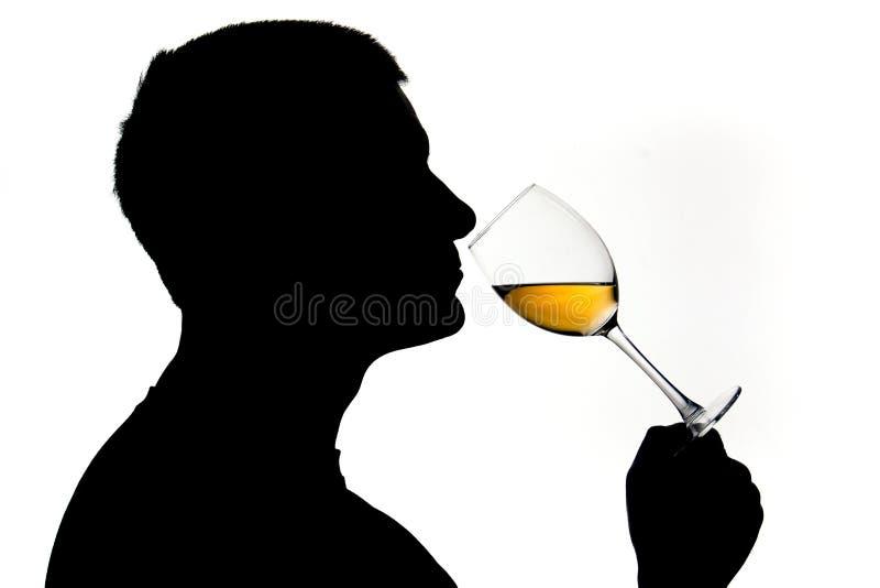 Het testen van de wijn stock foto