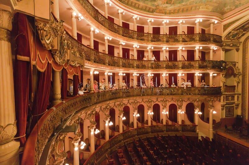 Het Theater Manaus Brazilië van Amazonas royalty-vrije stock afbeelding