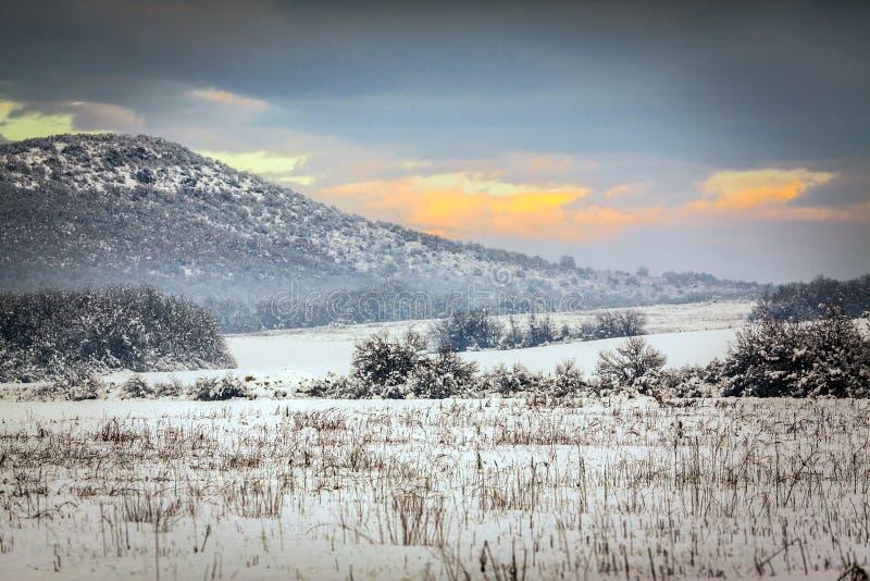 Het themalandschap van de de wintersneeuw vóór een onweer stock foto