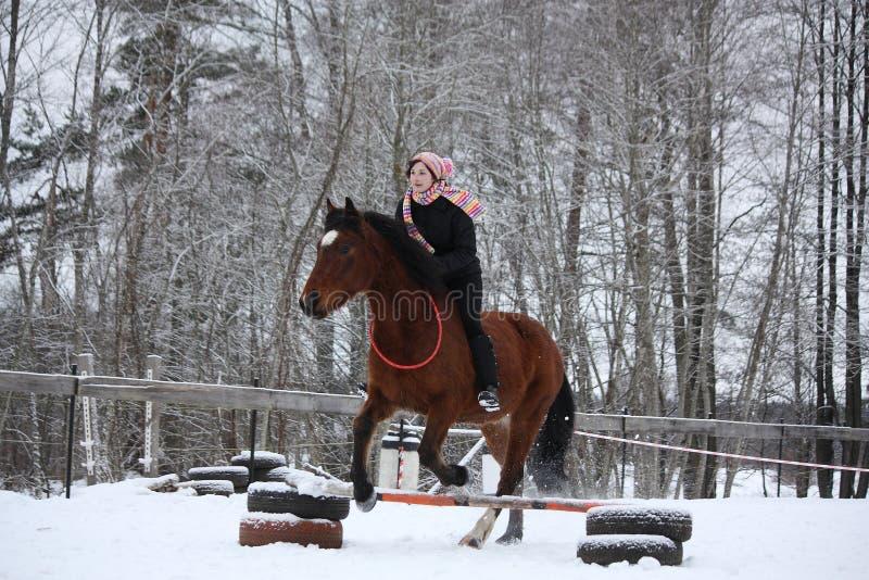 Het tienermeisje met bruin paard toont het springen zonder teugel en s stock afbeelding