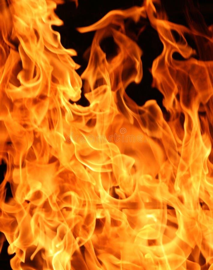 Het toenemen Vlammen stock foto's