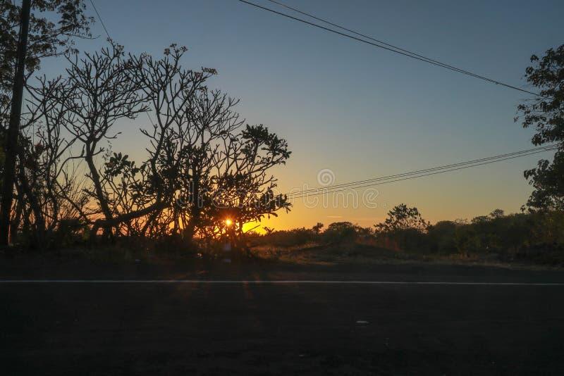 Het toenemen zon achter treetops Het plaatsen van zon achter bomen De nieuwe dag begint Eind van een prachtige dag De hemel is or royalty-vrije stock fotografie