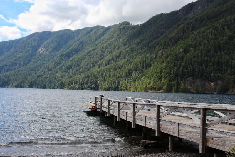 Het toenemende meer van de staat van Washington stock foto's