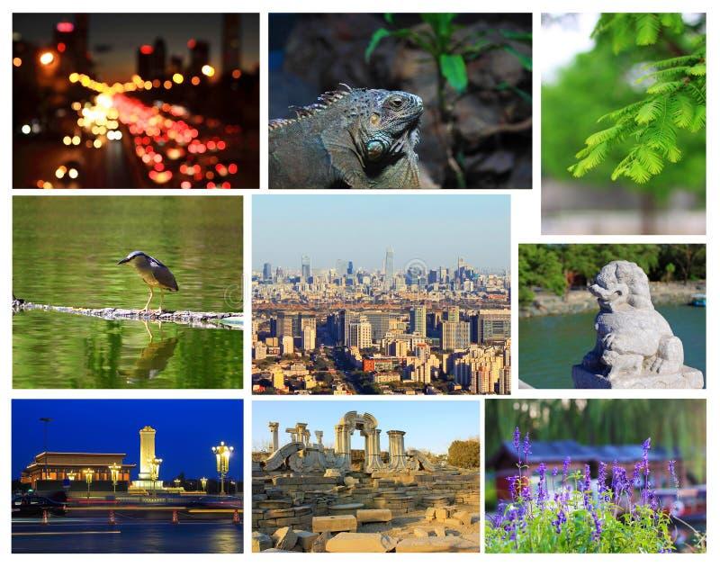 Het toerismebeeld van Peking royalty-vrije stock fotografie
