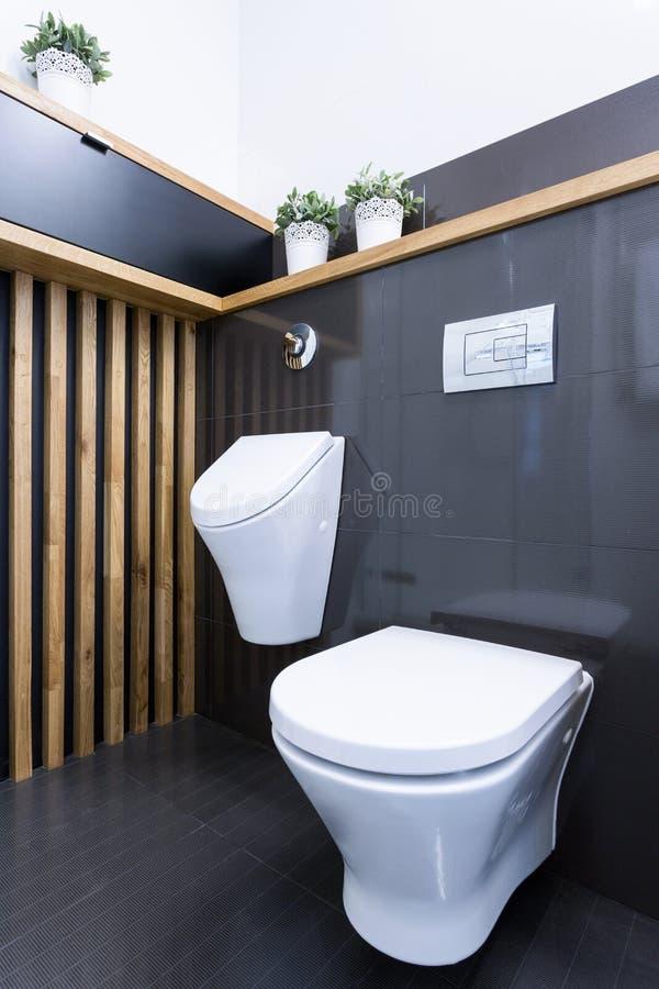 Het toiletbinnenland van de schoonheidsluxe royalty-vrije stock foto