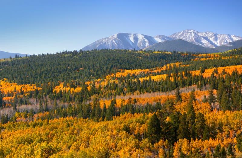 Het toneel landschap van Colorado stock afbeelding