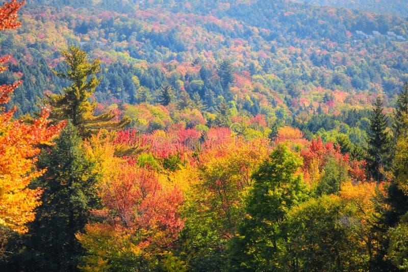 Het toneel Landschap van de Herfst stock afbeeldingen