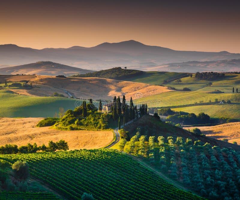 Het toneellandschap van Toscanië bij zonsopgang, Val-dOrcia, Italië stock foto