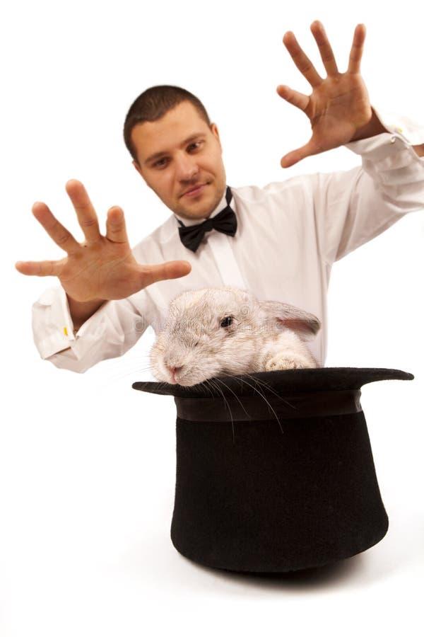 Het toveren van de tovenaar met een konijn stock foto's
