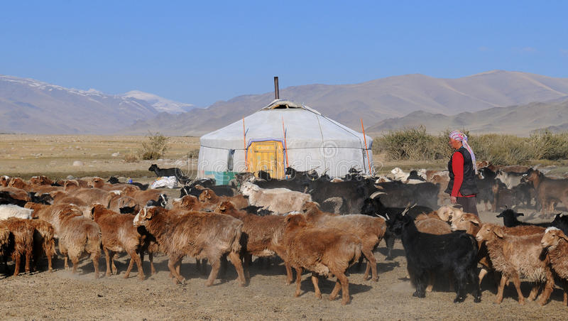 Het traditionele Leven in Mongolië royalty-vrije stock foto's