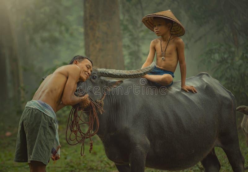Het traditionele leven van famer in platteland Thailand royalty-vrije stock afbeeldingen