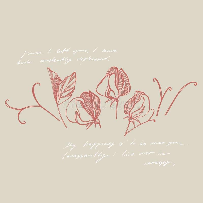 Het trekken en de schets van schatbloemen met lijn-kunst op witte achtergronden Botanische installatieillustratie handwritten stock illustratie