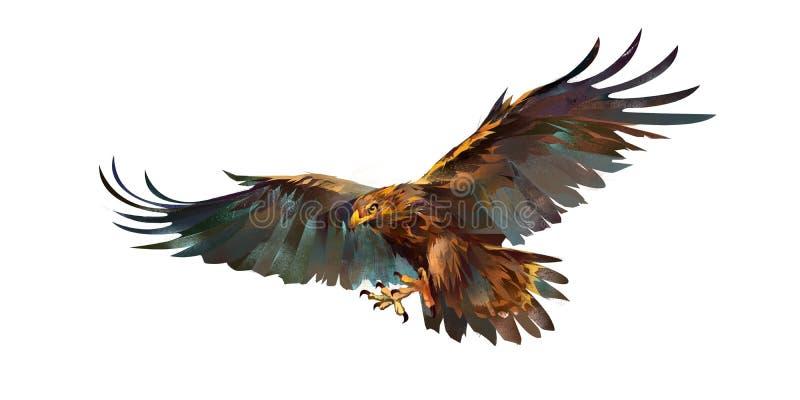Het trekken van vliegende adelaar op witte achtergrond royalty-vrije illustratie