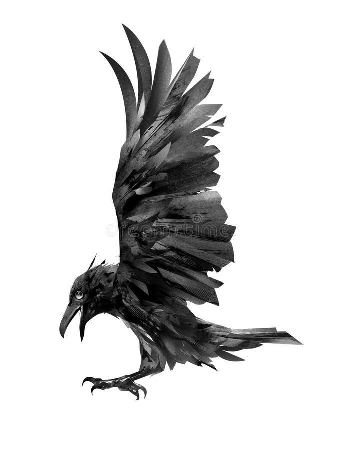 Het trekken van vliegende kraai Geïsoleerde schets van een vogel vector illustratie