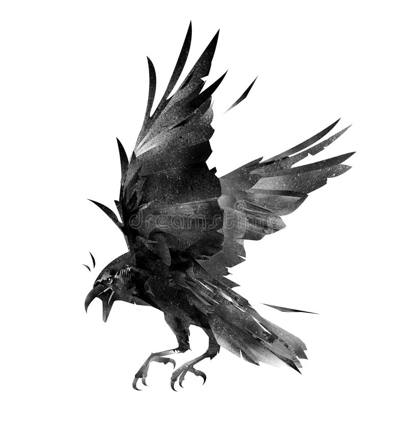 Het trekken van vliegende vogelkraai op een witte achtergrond royalty-vrije illustratie