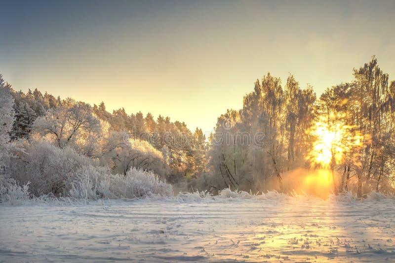 Het trillende landschap van de Kerstmiswinter op zonsopgang Warm zonlicht in de aard van de ochtendwinter Vorst en mist in duidel royalty-vrije stock foto's