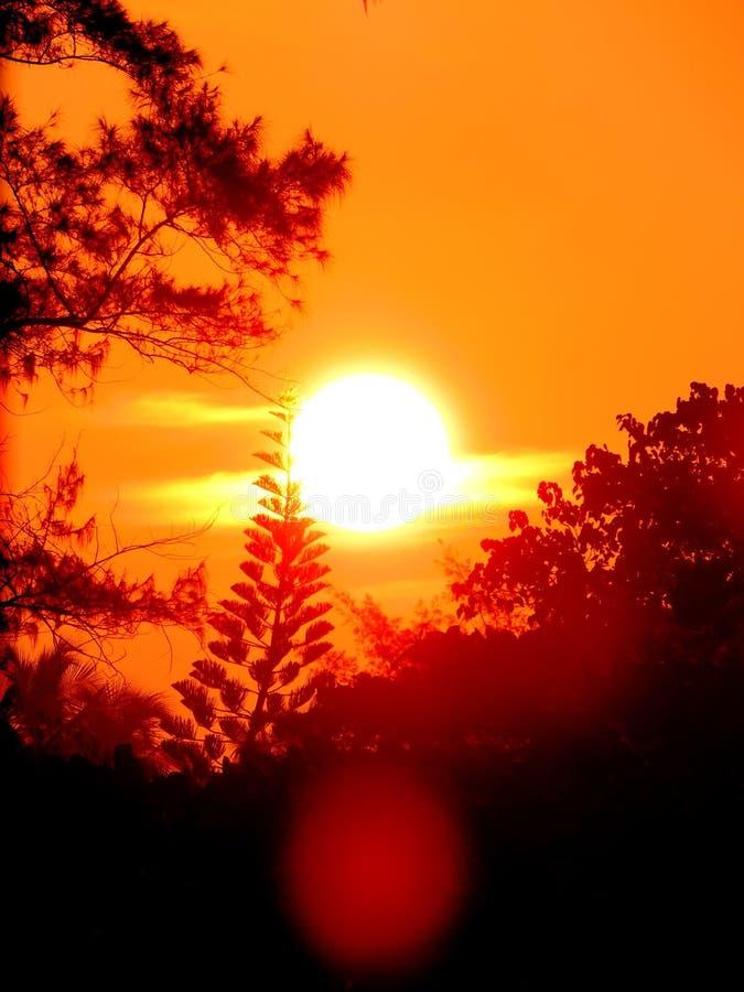 Het trillende zonlicht met oranje hemel in schemeringuren met lens flakkert zichtbaar royalty-vrije stock foto