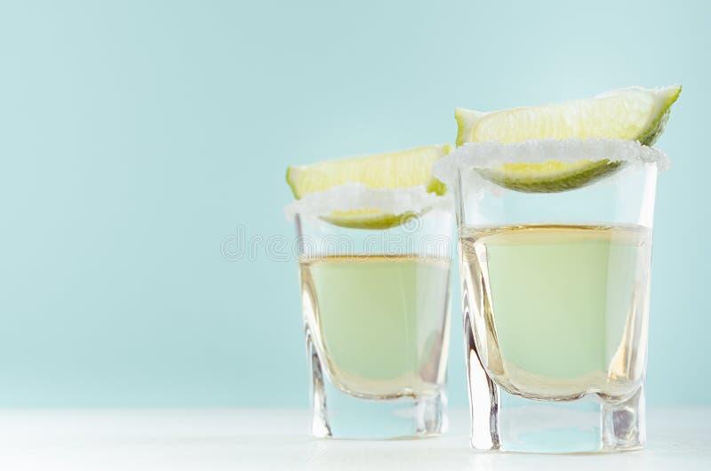 Het tropische de zomerschot drinkt tequila met groene kalk, zoute rand in twee geschotene glazen op de achtergrond van de pastelk royalty-vrije stock foto