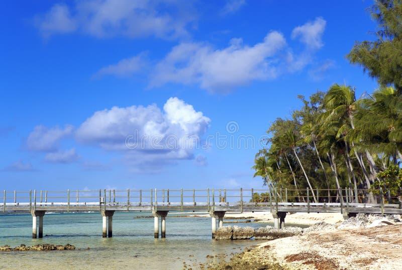 Het tropische eiland, palmen die, de brug naar het overzees gaan stock afbeelding