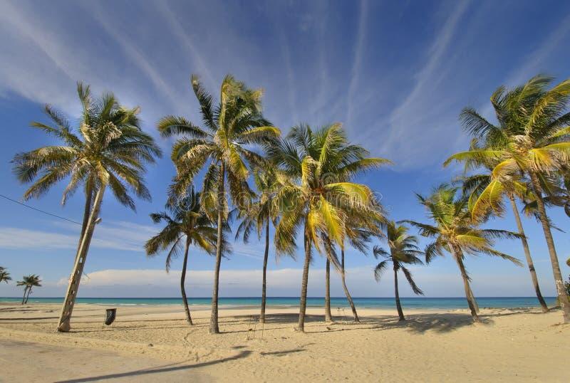 Het tropische strand in Santa Maria del brengt, Cuba in de war stock fotografie