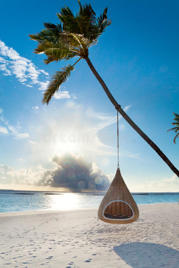 Het tropische strand van de Maldiven met palm en schommeling royalty-vrije stock fotografie