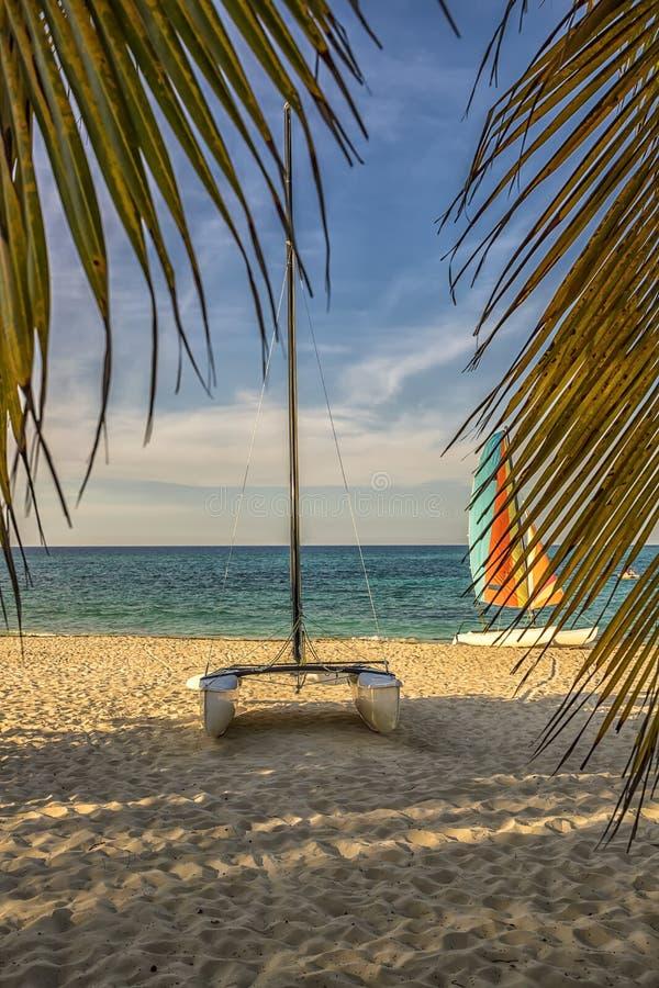 Het tropische toevluchtgebied met de mooiste stranden stock foto's