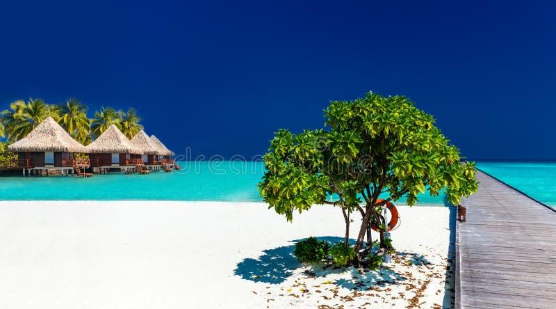 Het tropische zandige strand met wodden pier en over watervilla's royalty-vrije stock foto