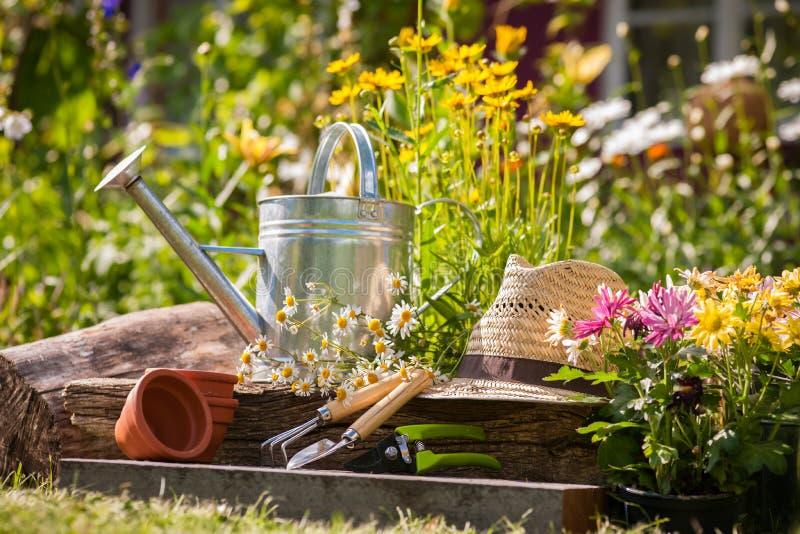 Het tuinieren stock afbeelding