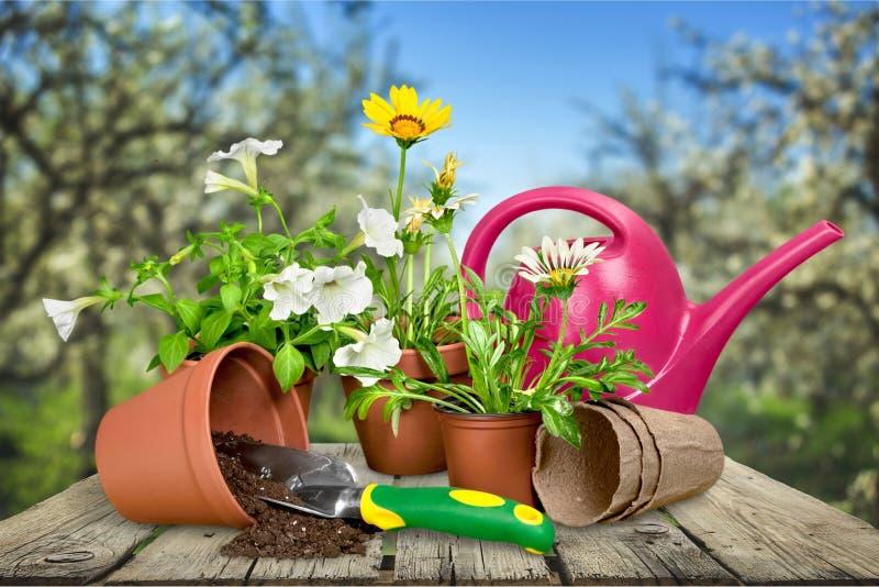 Het tuinieren apparatuur royalty-vrije stock afbeelding