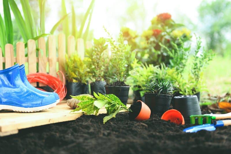 Het tuinieren de hulpmiddelen op grondachtergrond klaar aan het planten van bloemen en kleine installatie in de lente tuinieren d stock foto