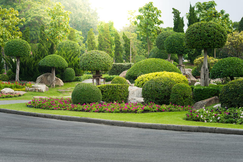 Het tuinieren en het Modelleren met Decoratieve Bomen royalty-vrije stock afbeelding