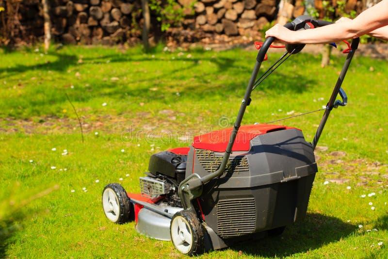 Het tuinieren Het maaien van groen gazon met rode grasmaaier royalty-vrije stock afbeelding
