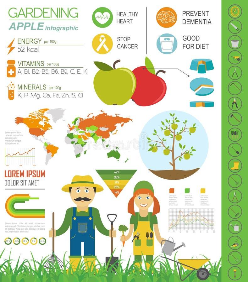Het tuinieren het werk, infographic de landbouw Apple Grafisch malplaatje FL vector illustratie